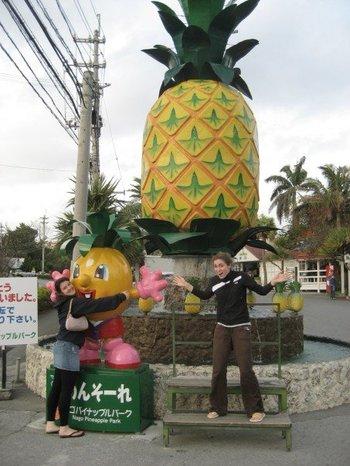 Pineapple_1